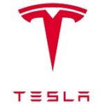 tesla electric car india